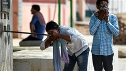 Brain disease kills 97 Indian children, 'heat curfew' imposed
