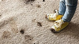 Wearing Dirty Shoes Indoors Could Protect Children From Asthma