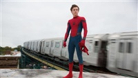 Spider-Man's Tom Holland Rescues Fan Suffering Attack As Autograph Hunters Push In