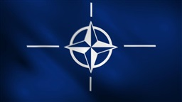 "Estonia sees life in ""brain-dead"" NATO"