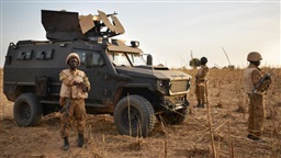 Seven Malian soldiers killed in clash with militants: army