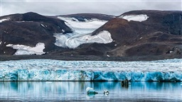 Ozone Damage Could Have Made Up Half of Arctic Warming in 50 Years