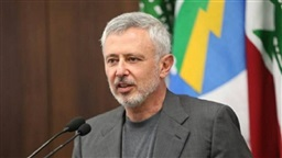 Frangieh confirms his party will not partake in new cabinet