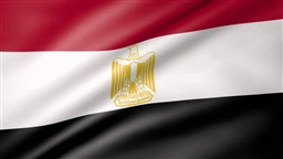 Egypt executes militant Ashmawy after being convicted over attacks - sources