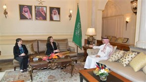 Bukhari tackles political developments with US ambassador
