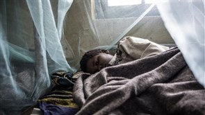 COVID-19 Threatens Global Progress Against Malaria, Warns UN