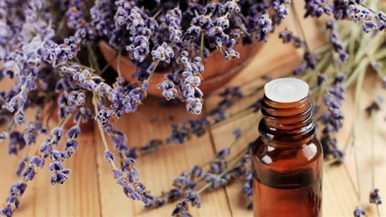 Lavender Oil Could Be Causing Abnormal Breast Growth in Young Boys and Girls