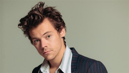 Harry Styles 'Threatened With Knife During Valentine's Day Mugging'