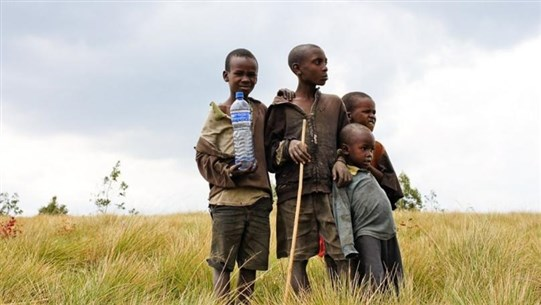 Almost 5,000 children separated in Tigray conflict - aid group