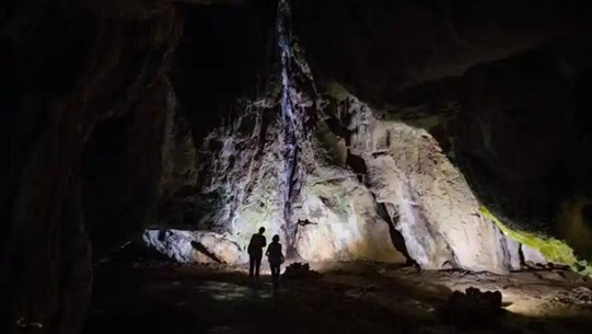 Genome Analysis Reveals Unknown Ancient Human Migration in Europe